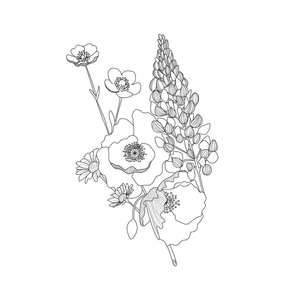 botanicals-03.JPG