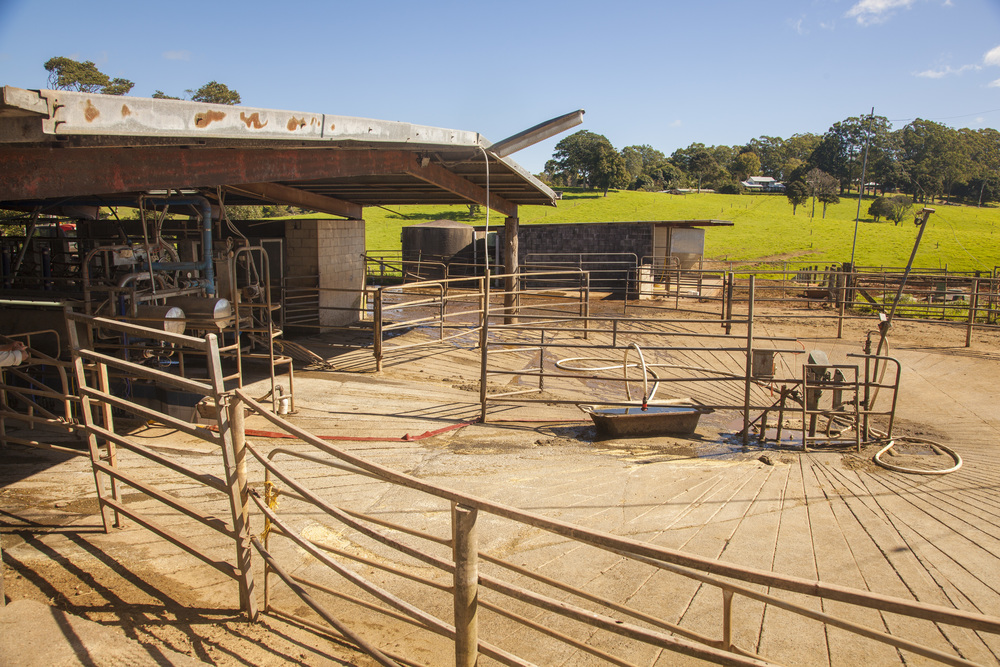 Maleny Dairy 18 May 2016_36.jpg