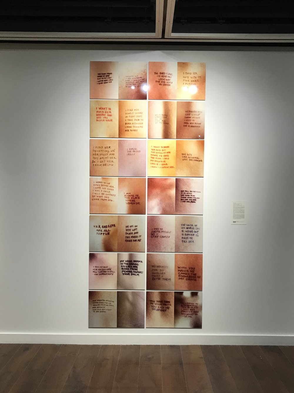 25_Jenny Holzer, Untitled (Selections from Lustmord), 1994, installation view, The Un-Heroic Act, Shiva Gallery JJC. Photo Monika Fabijanska