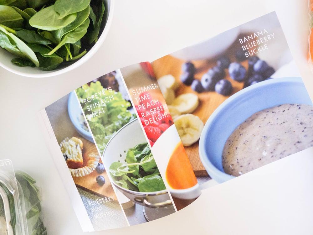 organic puree book