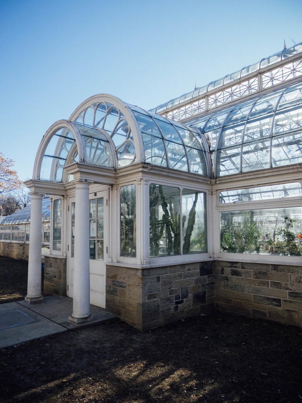 A Family Outing // Allan Gardens Conservatory