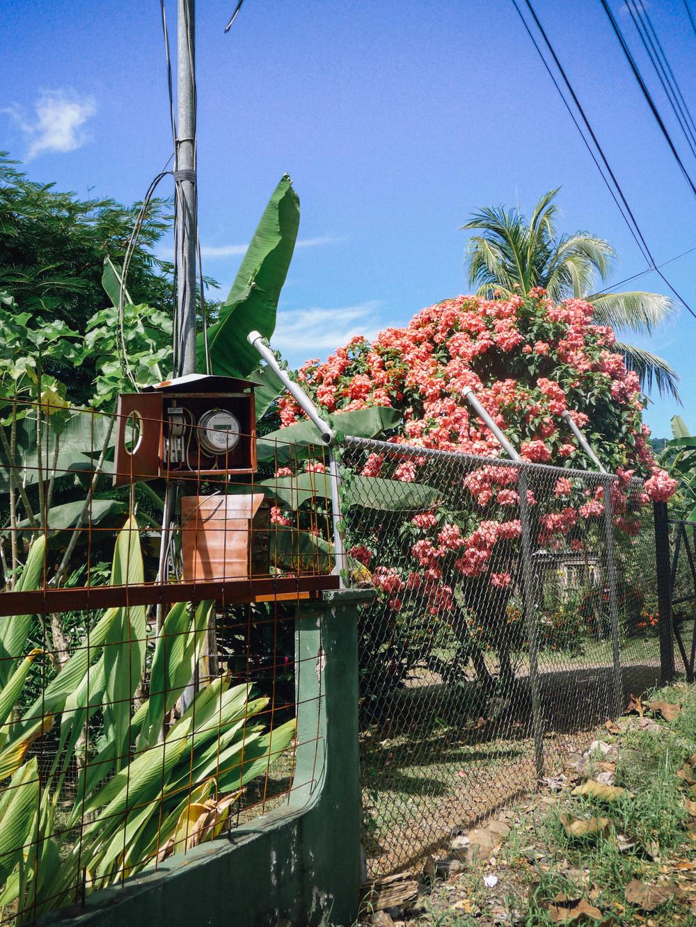 Jacó, Costa Rica