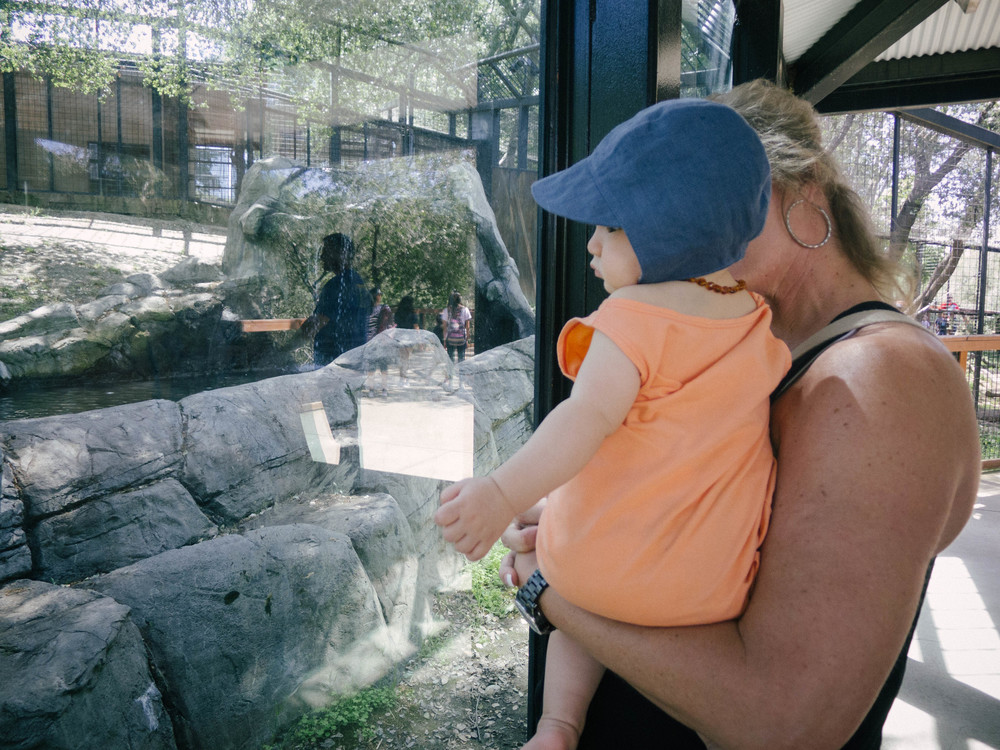 A Family Outing // Folsom City Zoo Sanctuary