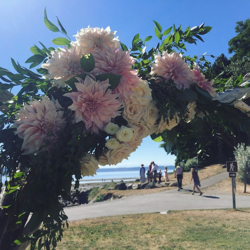 Ceremony arch on driftwood-Amy Galbraith Photography