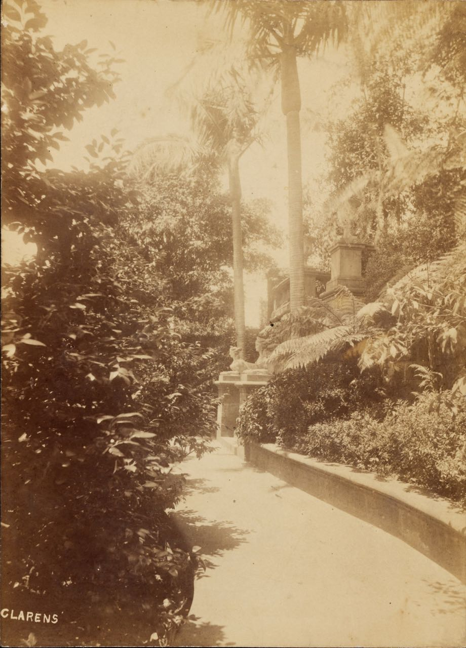 Clarens Gardens, Potts Point, Sydney.