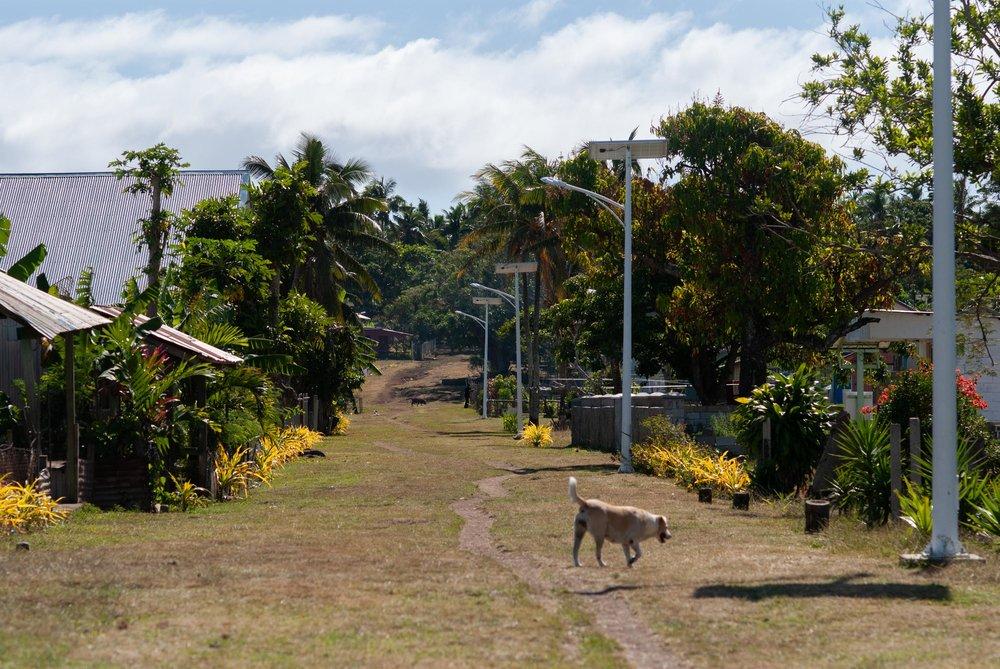 Tonga-56.jpg