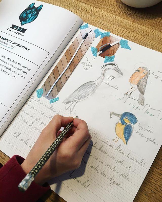 Nouveau cahier pour les filles ! Un cahier pour consigner leurs tâches et leurs découvertes dans le cadre du #wildexplorersclub. Liv raconte sa promenade d'hier pour chercher un bâton de marche. Nous avons observé un rouge-gorge très curieux, un héron cendré et un martin pêcheur !! Une chouette sortie ! @wildexplorersclub  #cahiersh #wildandfreechildren #naturelovers