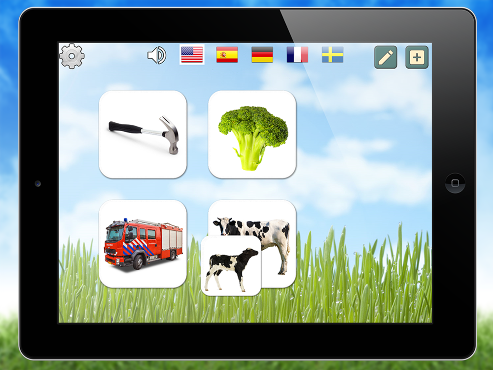 Try the bundled decks with tools, vegetables & fruits, vehicles and animals