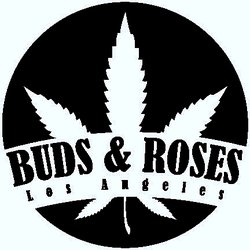 Buds-and-Roses.jpg