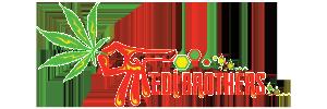 Medibros-Logo-300x100.png