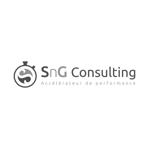 SnG-Consulting.png