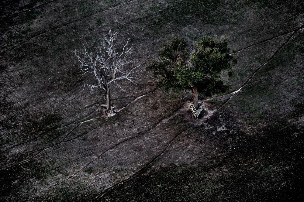 Zegna_Australia_081214_16215.jpg