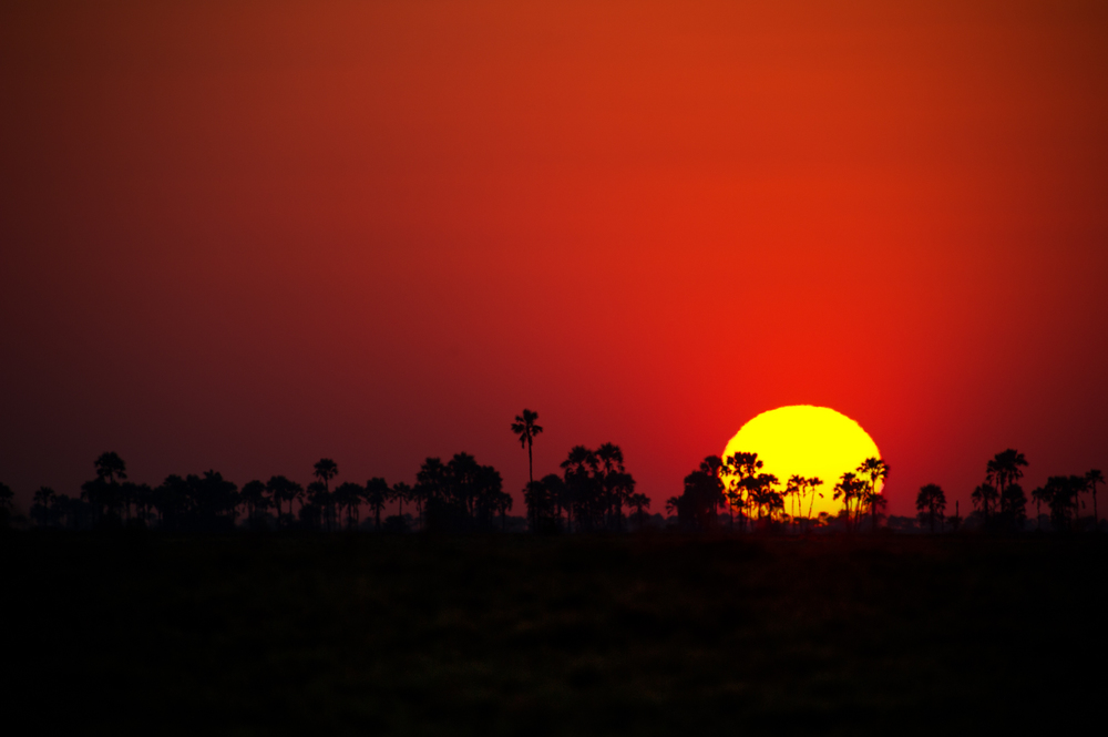 Botswana_01470.jpg
