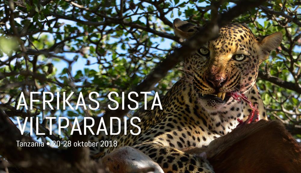 """Africas last wildlife paradise""."