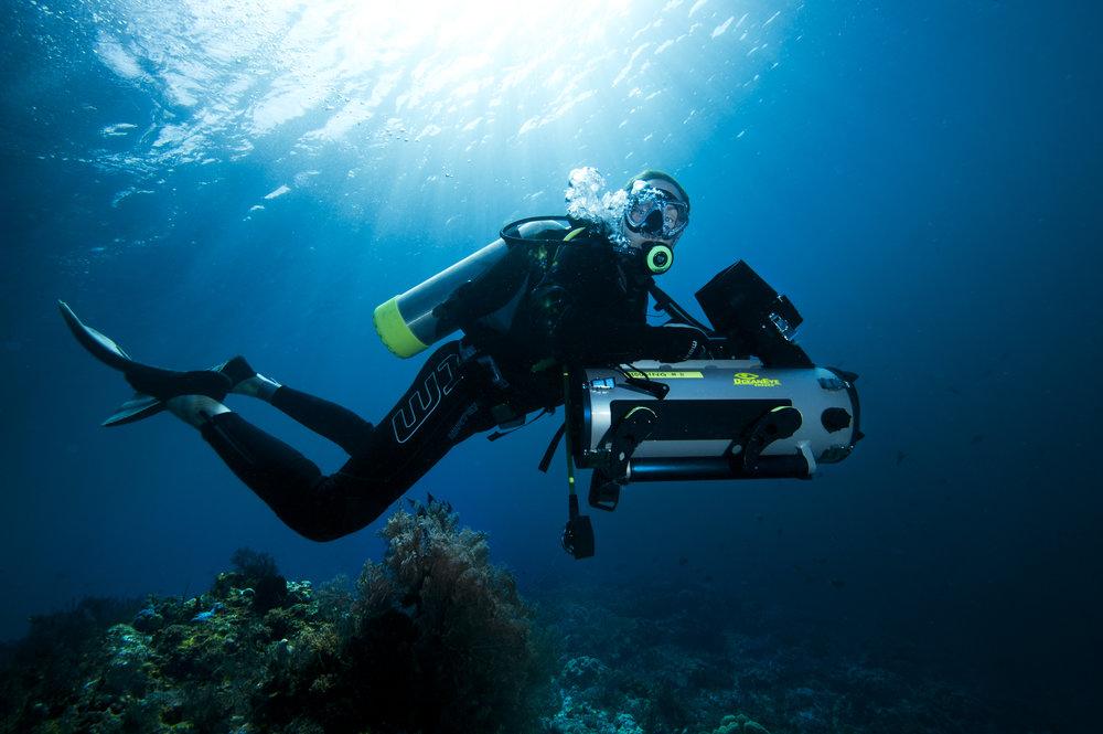Oceans_WestPapua_101001_06351.jpg