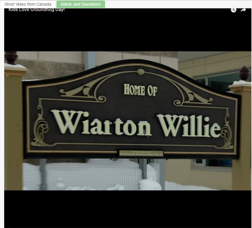 Who is Wiarton Willie?