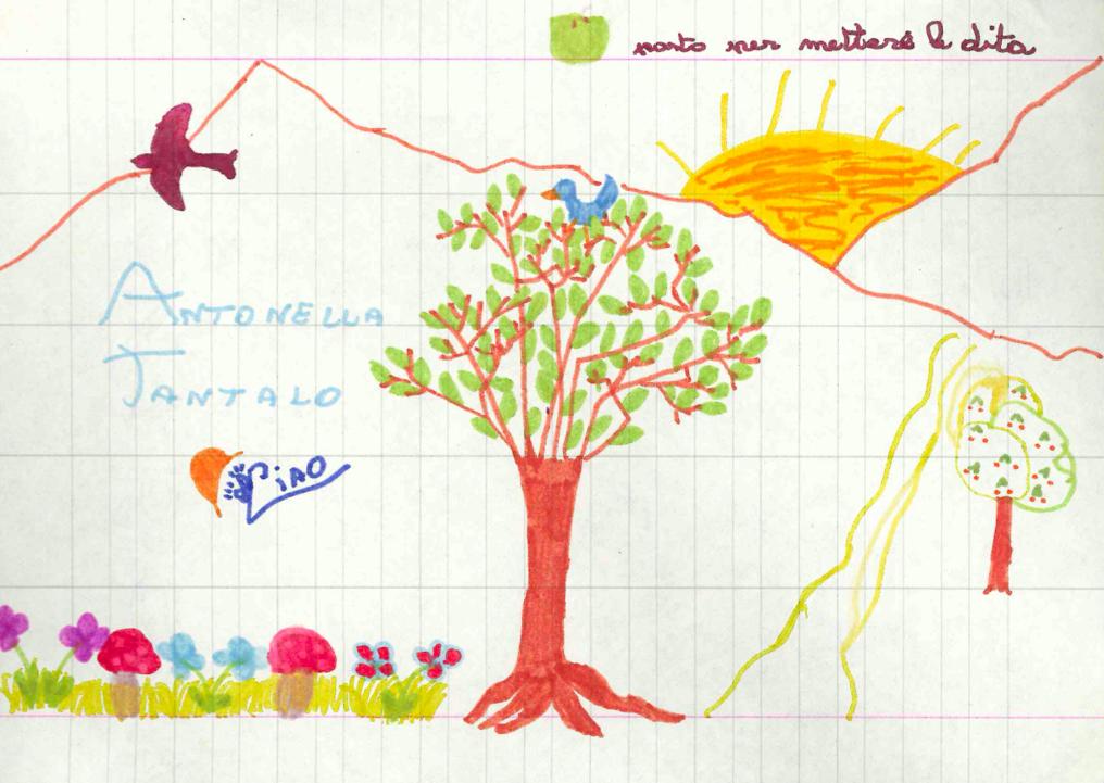primo-albero