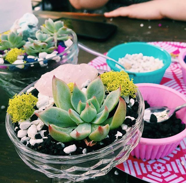 🌵Oh how we look forward to the sweet, succulent, summer days of outdoor planting. So close!🌵Side note: if you missed out on tickets to our Cactus & Crystals Workshop™ on 5/1 at Frankford Hall, tickets are still available to our workshop on 5/8! Register now to guarantee your spot ➡️ Beaucycled.com. 💚 📷: @maryfeola