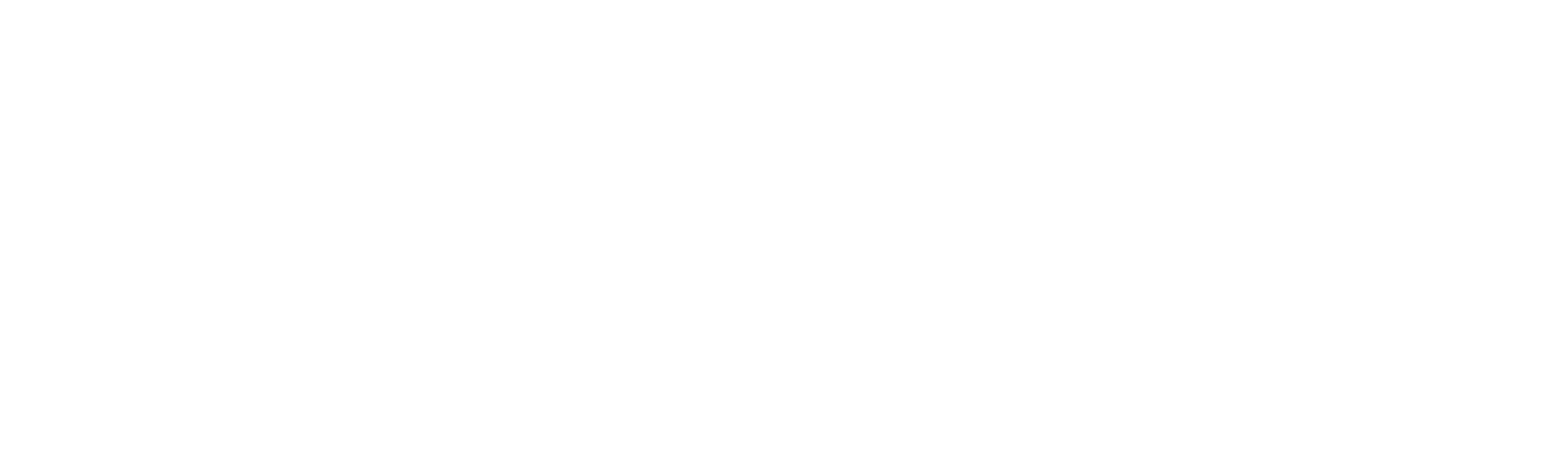 Life Force Physiotherapy