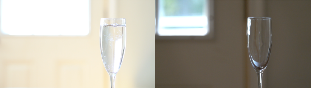 Sony a6300 with Sony E50mm f/1.8 wide open on left; on right, Sony RX10 Mark III wide open on another day.I just couldn't get close with the RX10 Mark III, using as much of the long end as I could while preserving low noise levels (jacking up the ISO would have lightened the image but as I was already at max aperture it wouldn't have helped in that regard). This may not matter to you as much as it does to me, but make sure that's the case before you decide which way you want to go.