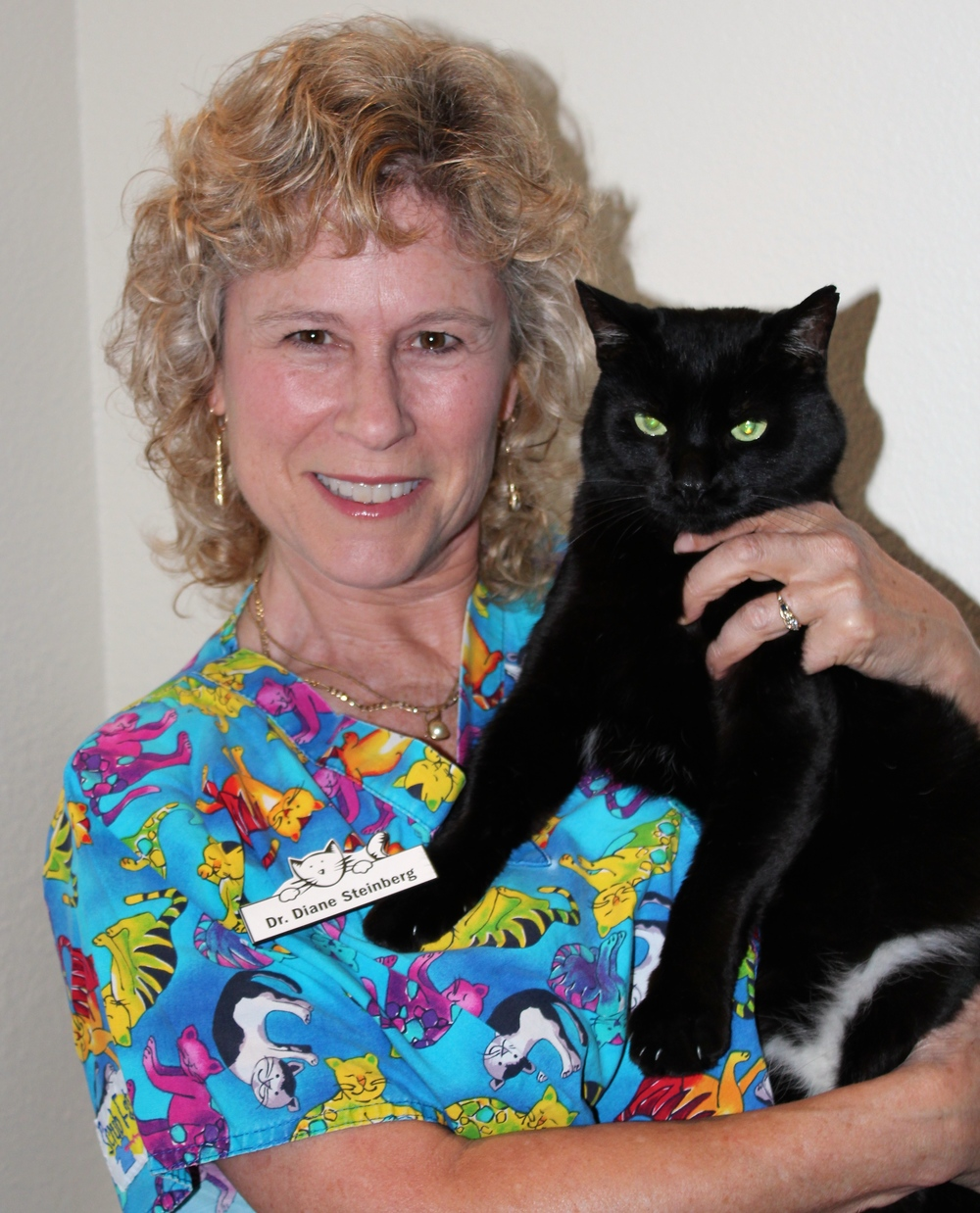 Diane Steinberg, DVM, DABVP (Feline)