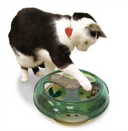 Interactive Cat Toy. Click on the photo for a link to others!