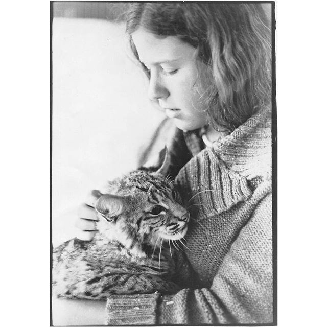 43 years later and she still looks at her patients with such love and care. Happy Birthday to our mentor and champion of all things feline, Dr. Diane Steinberg! 🐈🎂 #tbt #happybirthday #bobcat #keepcalmandlovecats #catclinicvet
