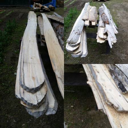 drift wood 5.jpg