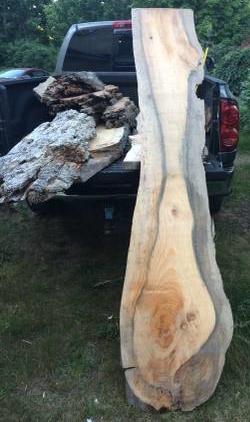 drift wood 1.jpg
