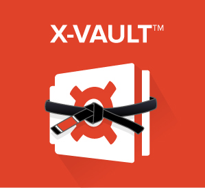 X-Vault-Belt-Graphic.jpg