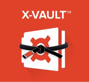 X-Vault-Belt-Graphic.jpg