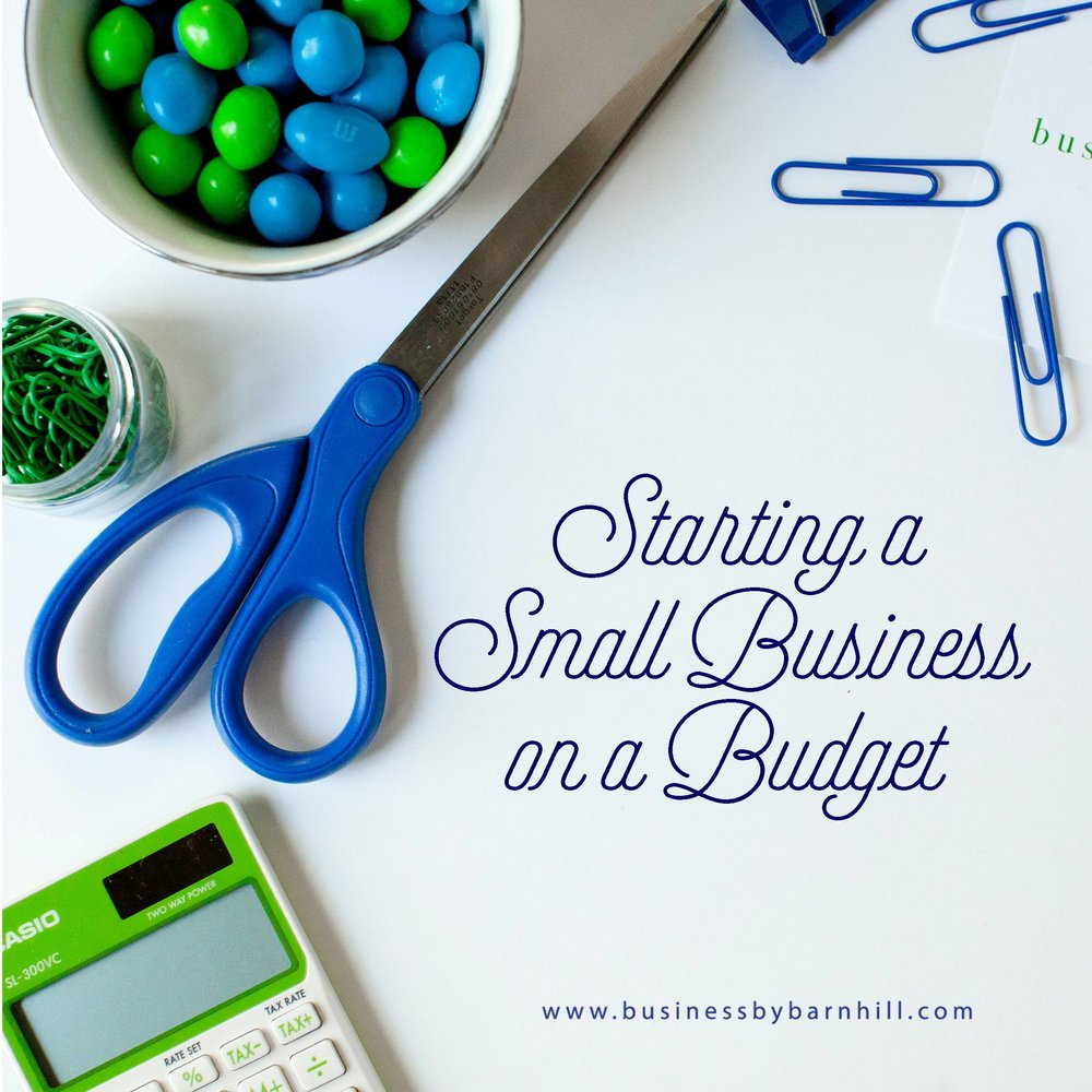 Starting a Small Business on a Budget graphic