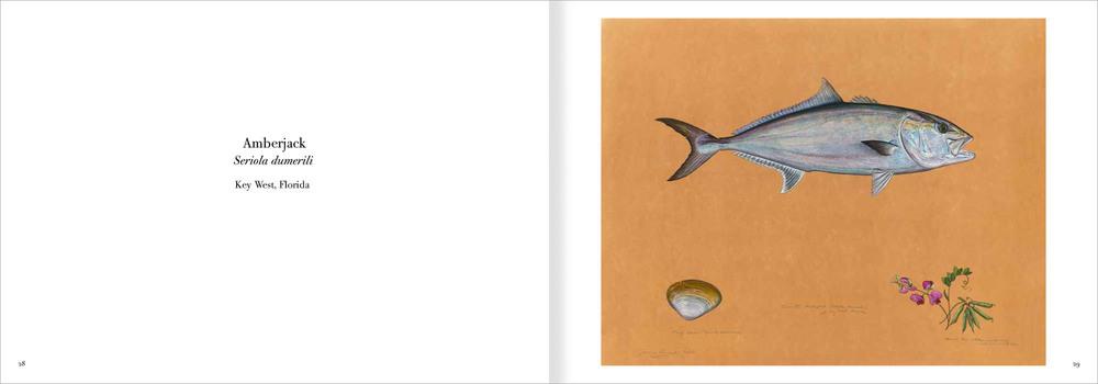 02.fishpart1-1.jpg