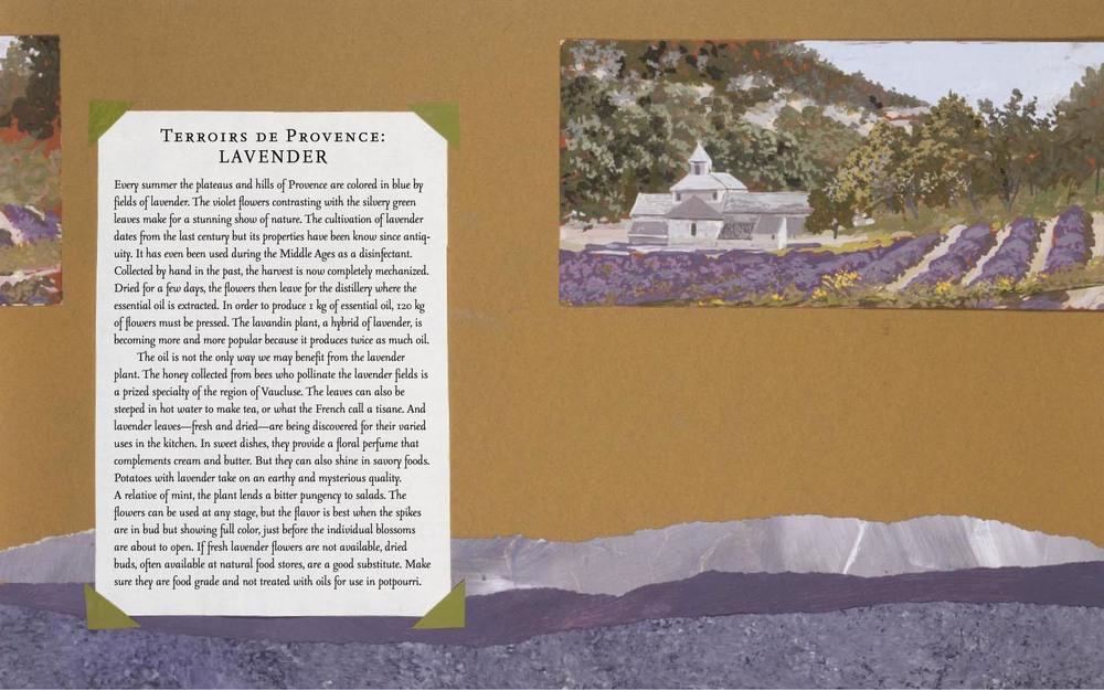provenceblad-3.jpg