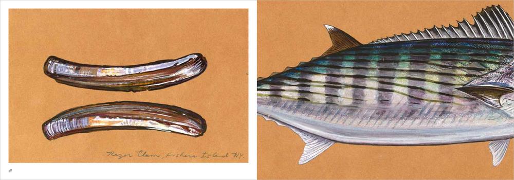 02.fishpart1-16.jpg