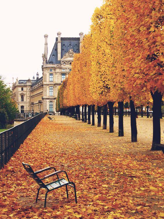 Address: Jardin des Tuileries, 113 Rue de Rivoli, 75001 Paris