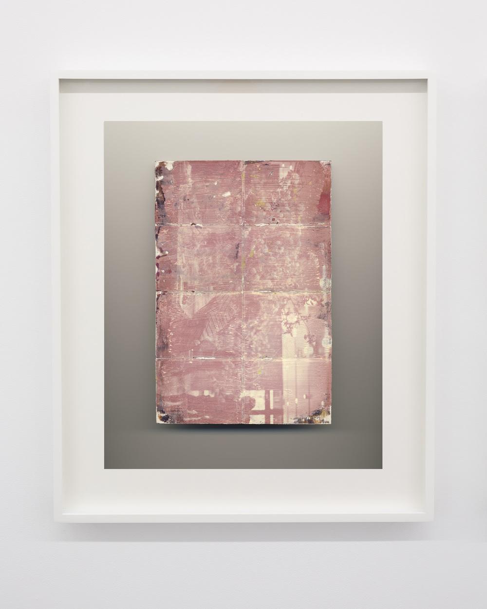 Flowers , 2016, inkjet print,aluminum frame
