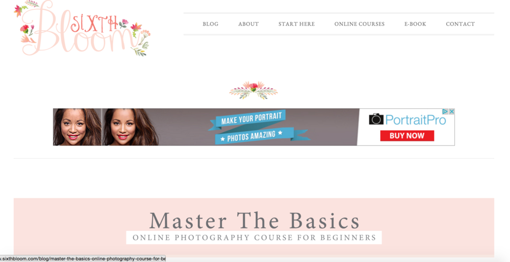 Sixth bloom, Photography courses, Photography for beginners