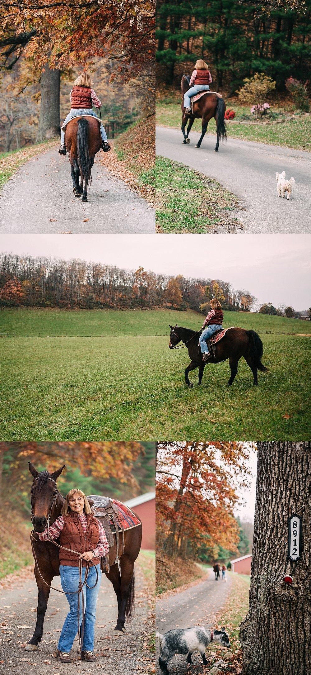 Strasburg Ohio Photography, Equine photography session