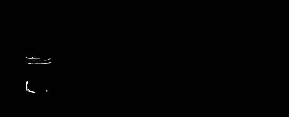 Jamie Lynette Photography Logo