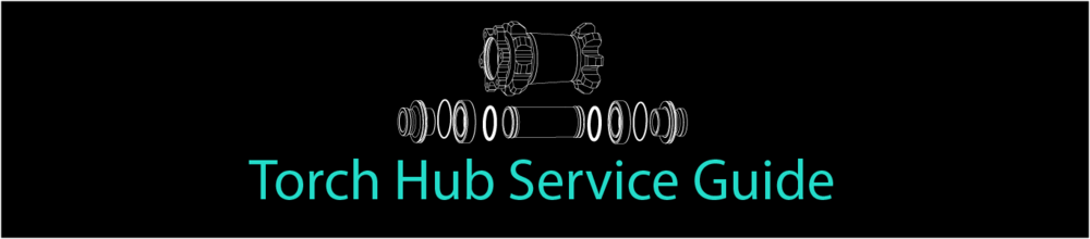 Torch Hub Service Guide Click through 1366x300.png