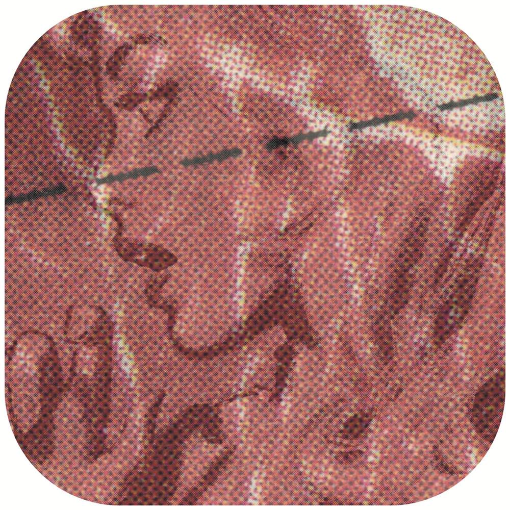 "Concrete Blonde , 2000, 33 x 33 1/4"", lambda print, plexiglass and custom hardware."