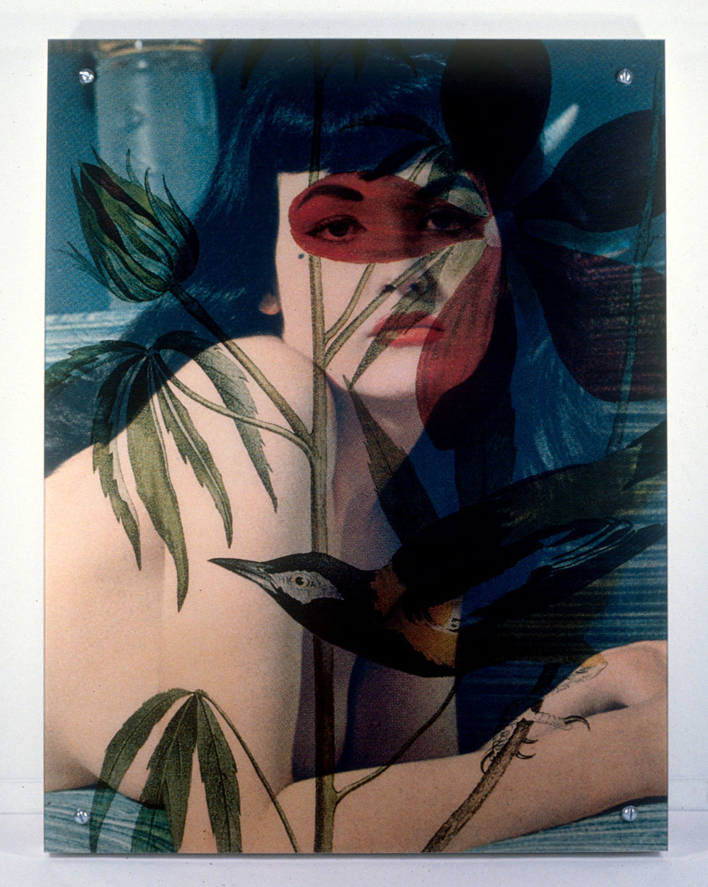 "Woman As Object 1 (Version II) , 1996, 42 x 31 1/2 x 3 1/4"", digital print, plexiglass, frame and hardware."