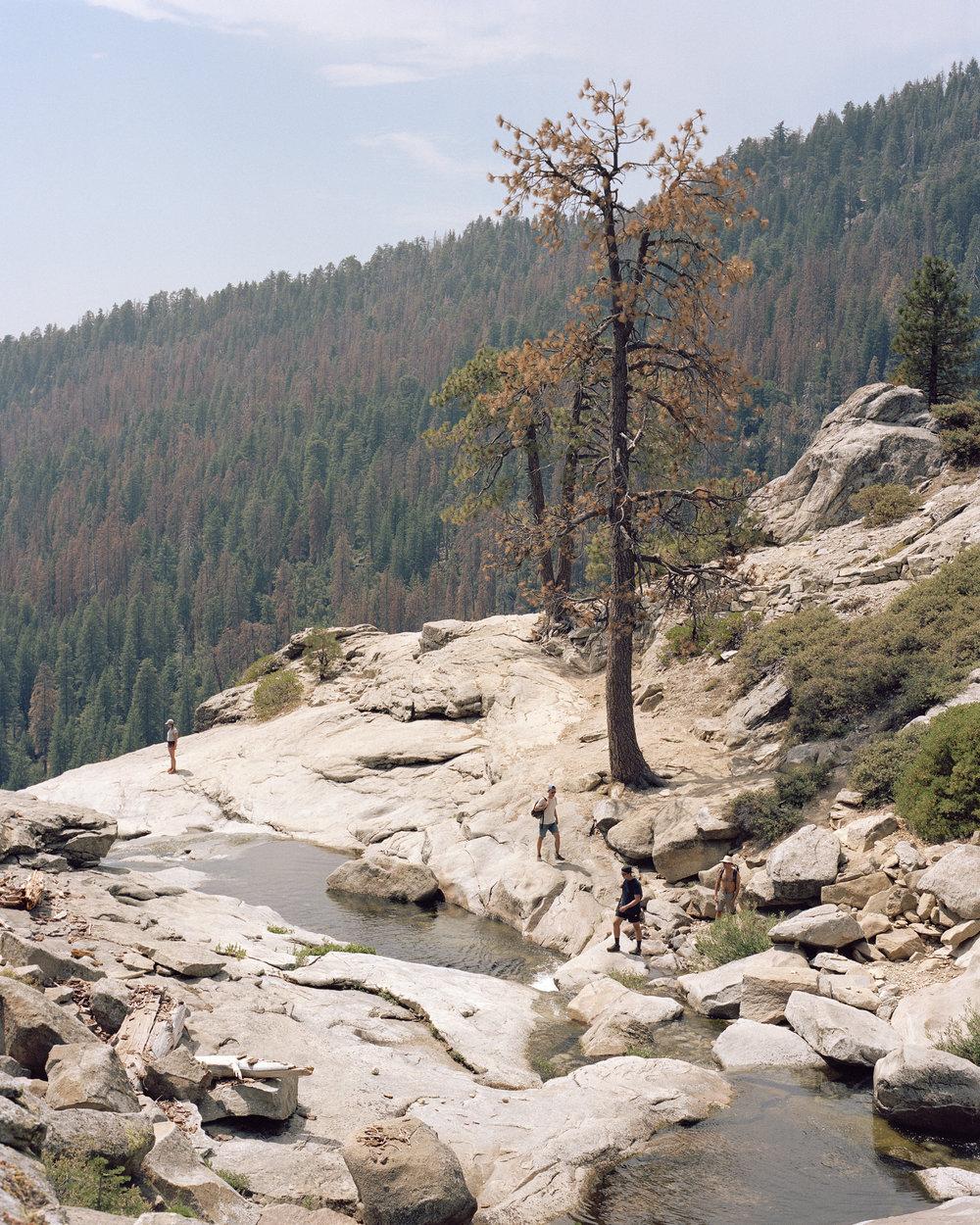 Yosemite, CA    Limited Edition Print Inquiry