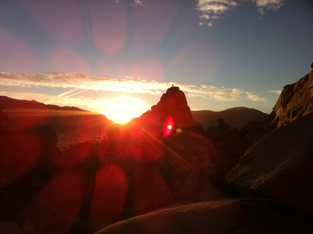SUNRISE AT JOSHUA TREE