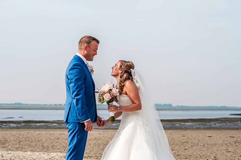 Prachtige eerste ontmoeting op het strand van Sint Philipsland