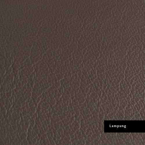 genuine-leather-lampung.jpg