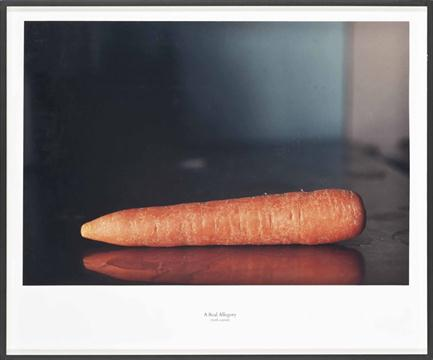 A Real Allegory (with carrot)  Oliver Richon's original