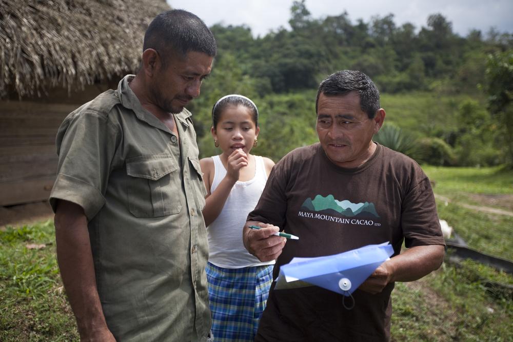 Impact Report 2013