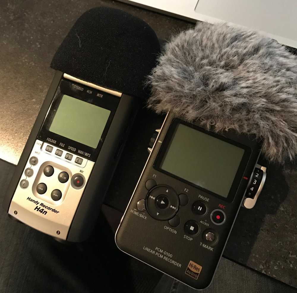 Zoom H4N with foam windjammer and Sony D100 with included furry windjammer.